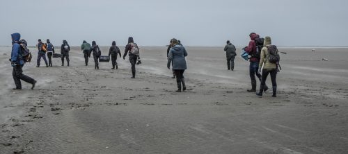 Vrijwilligers ruimen de stranden op